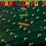 HawaiianPuos