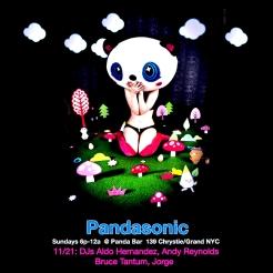 Pandasonic
