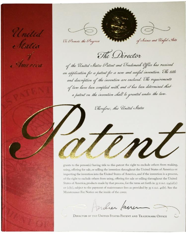 Zoro_Patent_Book